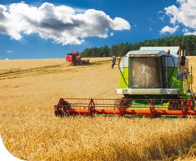 Július, az aratás hónapja